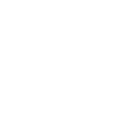 Defacto X